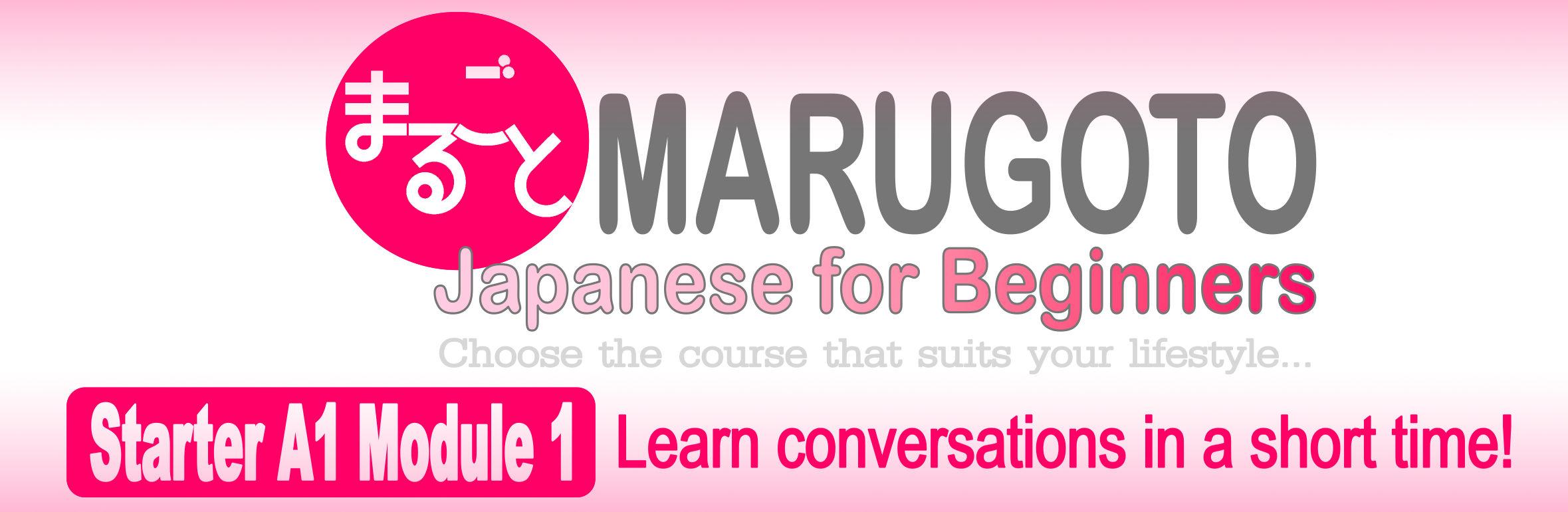 MARUGOTO Japanese for Beginners  Starter A1 Module 1 (Tuesdays&Thursdays) – Deadline: January 6, 2020 (Mon)